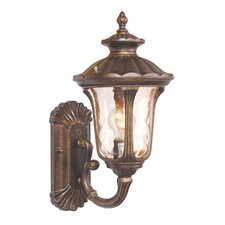<strong>Livex Lighting</strong> Oxford Outdoor Wall Lantern