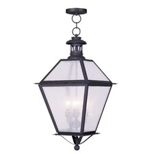 <strong>Livex Lighting</strong> Waldwick 4 Light Outdoor Hanging Lantern
