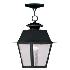 Mansfield 1 Light Outdoor Hanging Lantern