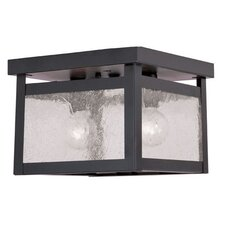 <strong>Livex Lighting</strong> Milford 2 Light Flush Mount