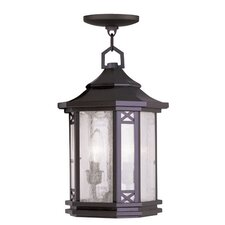 Tahoe 2 Light Outdoor Hanging Lantern