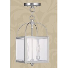 <strong>Livex Lighting</strong> Milford 2 Light Convertible Foyer Pendant
