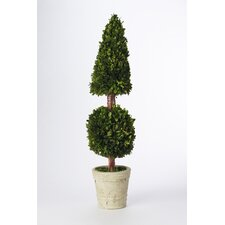 "Preserved Boxwoods 36"" Preserved Greens Cone and Ball Topiary"