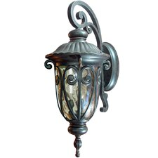 Viviana 1 Light Outdoor Wall Lantern