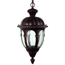 <strong>Yosemite Home Decor</strong> Merili 2 Light Outdoor Hanging Lantern