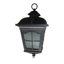 Amelia 1 Light Outdoor Hanging Lantern