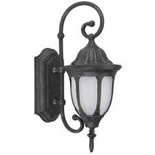 Merili 1 Light Outdoor Wall Lantern