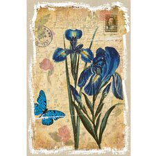 Revealed Artwork Iris Graphic Art on Canvas