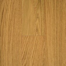 "Austin Springs 3-1/2"" Engineered Red Oak Flooring in Natural"