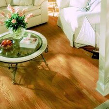 "Jacks Creek 5"" Solid Red Oak Flooring in Natural"