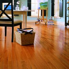 "Jacks Creek 3-1/4"" Solid Red Oak Flooring in Butterscotch"
