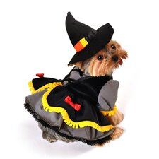 Scarecrow Witch Dog Costume