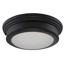 Chance 1 Light Flush Mount