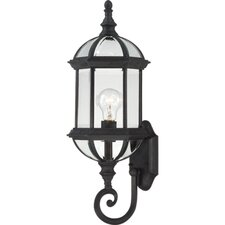 <strong>Nuvo Lighting</strong> Boxwood 1 Light Outdoor Wall Lantern