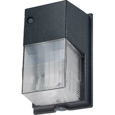 Compact Fluorescent 1 Light Outdoor Wall Light