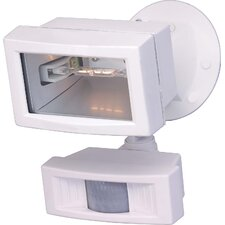 1 Light Flood Light with Motion Sensor