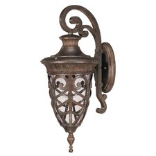 Aston 1 Light Arm Down Wall Lantern