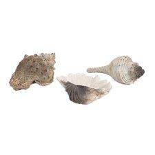 3 Piece Milton Seashells Set