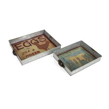 2 Piece Farmer Galvanized Glass Trays Set