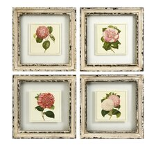 Lynette 4 Piece Framed Graphic Art Set