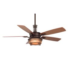 "<strong>Fanimation</strong> 54"" Andover 5 Blade Ceiling Fan"