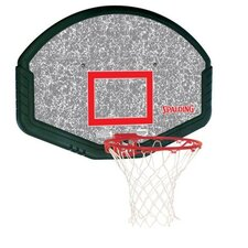 "48"" Eco-Composite Backboard and Rim"