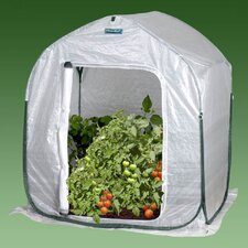 "3.5"" H x 3.0' W x 3.0' D PlantHouse Polyethylene Mini Greenhouse"