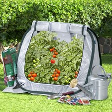 "Seedhouse Jr. 30"" x 30"" Polyethylene Mini Greenhouse"