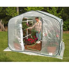 Dreamhouse 6' x 8' Polyethylene Greenhouse