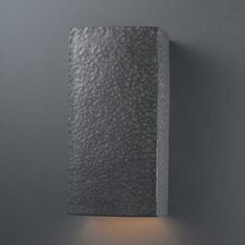 Ambiance 1 Light Outdoor Wall Sconce
