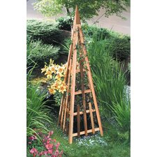 <strong>Buyers Choice</strong> Phat Tommy Pyramid Trellis