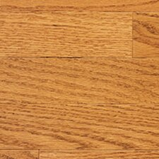 "Color Strip 3-1/4"" Solid Red Oak Flooring in Golden"