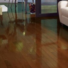 "Color Strip 2-1/4"" Solid White Oak Flooring in Spice High Gloss"