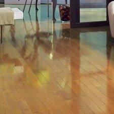 "Color Strip 2-1/4"" Solid Red Oak Flooring in Natural High Gloss"