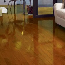 "Color Strip 2-1/4"" Solid Red Oak Flooring in Butterscotch High Gloss"