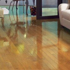 """Color Strip 3-1/4"""" Solid White Oak Flooring in Natural High Gloss"""