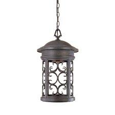 Ellington Dark Sky 1 Light Hanging Lantern