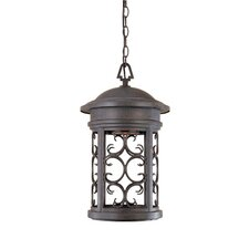 Ellington Dark Sky 1 Light Hanging Lantern
