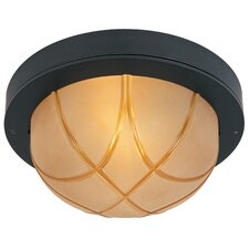 Allegro Indoor or Outdoor Flush Mount