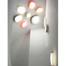 Guijarro 6 A Wall & Ceiling Sconce