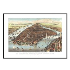New York 1883 Historical Print Mounted Framed Wall Map