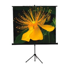 Mustang Black Portable Projection Screen