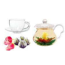 Fairy 0.63-qt. Jasmine Fab Flowering Tea Set