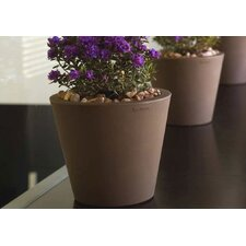 <strong>Smart & Green</strong> Cono Fang Round Flower Pot Planter