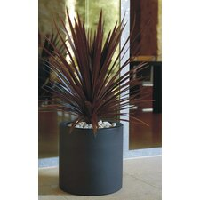 <strong>Smart & Green</strong> Cilinder Fang Round Flower Pot Planter