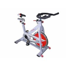 <strong>Sunny Health & Fitness</strong> Pro Indoor Cycling Bike