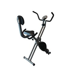 <strong>Sunny Health & Fitness</strong> Folding Recumbent Bike