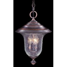 Carcassonne 3 Light Outdoor Hanging Lantern