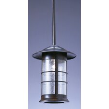 Newport Stem 1 Outdoor Light Hanging Lantern