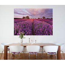 Fototapete 'Lavendel' - 184 x 127 cm